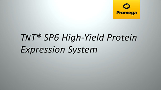 TNT SP6 High Yield Protein Expression System Animation