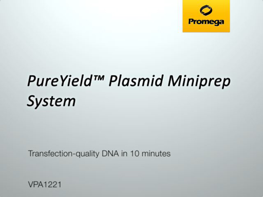 PureYield Plasmid Miniprep System Video